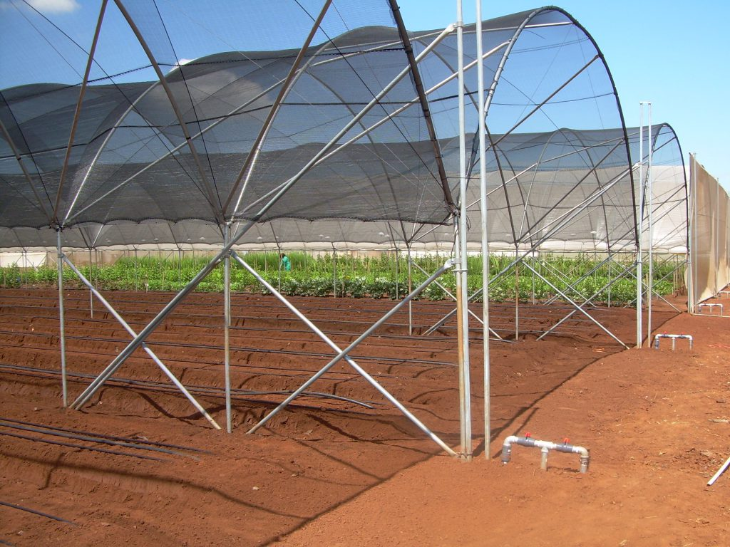 Shade net clad 4-Series tunnel